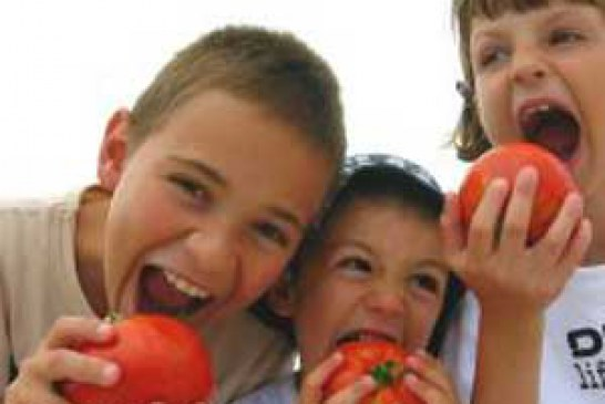 برنامه غذایی پاییز ۱۳۹۳