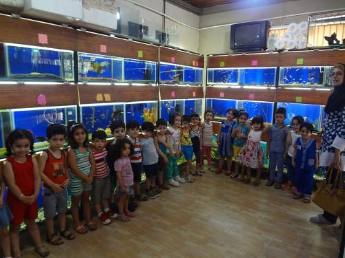 akvarium va shpazi tiiir 018
