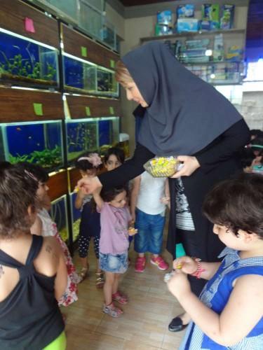 akvarium va shpazi tiiir 025