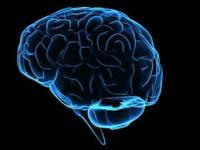 """""""با این ۶ روش حافظه خود را تقویت کنید"""""""