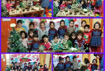 جشن کاج در مهد تمام الکترونیک جاویدان