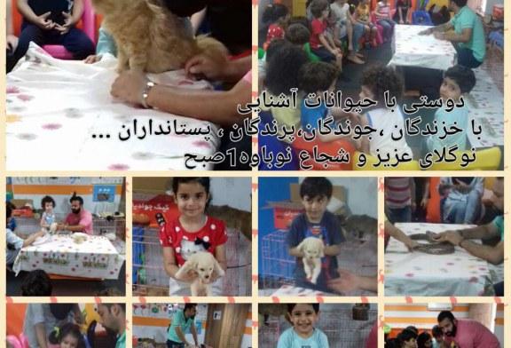 برگزاری جشنواره آشنایی با حیوانات