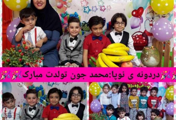 تولد نوگلان مهر