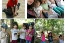 اردوی یک روزه مدرسه طبیعت