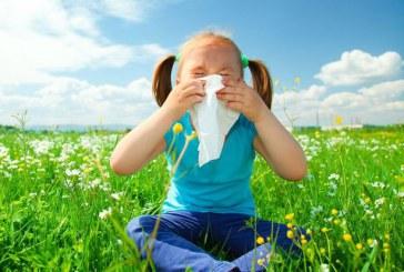 راههای متوقف کردن آلرژی های بهاری