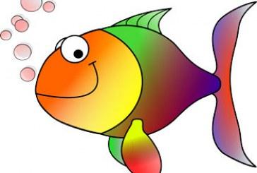 قصه ماهی رنگین کمان و دوستانش